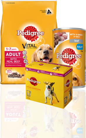 PEDIGREE Product group